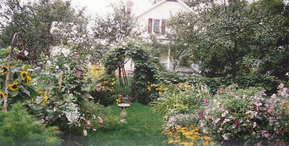 Dirk Berghout's cottage garden in Indian River - 2007