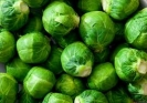 BRUSSELS SPROUTS -HESTIA